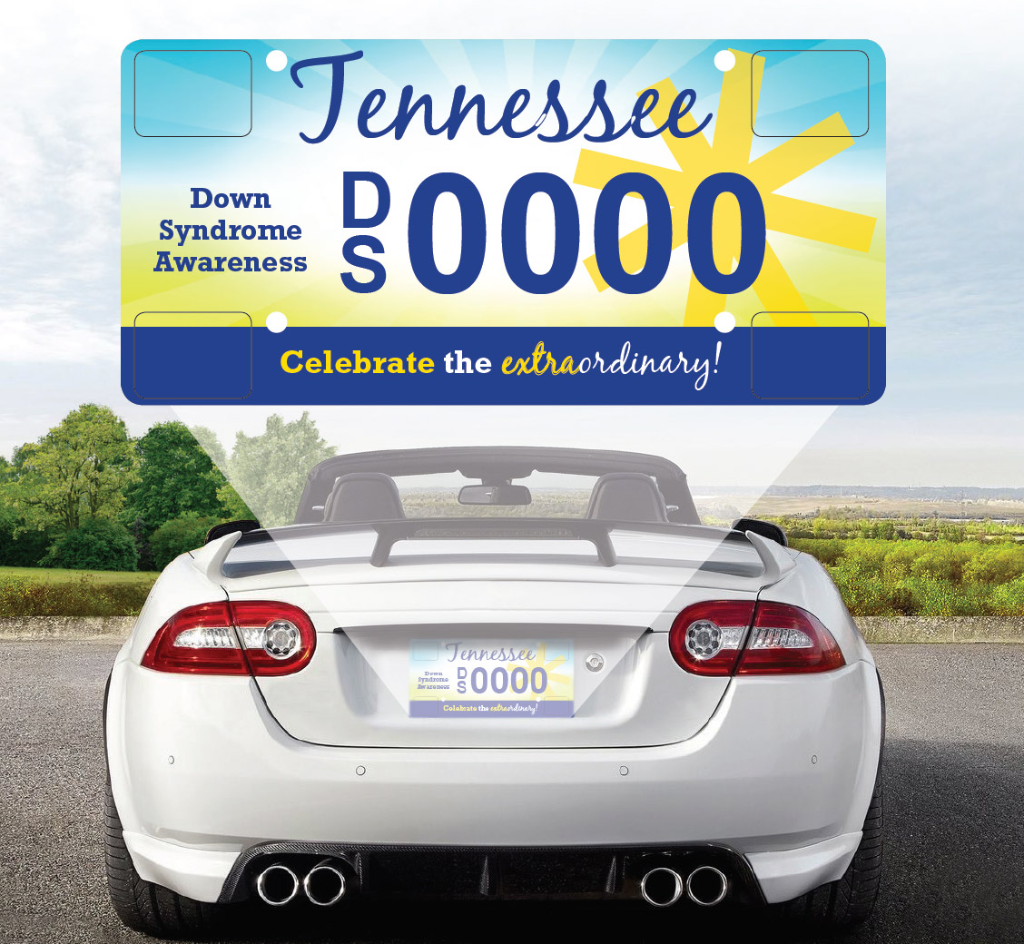 Down Syndrome Awareness License Plate - DSAMT